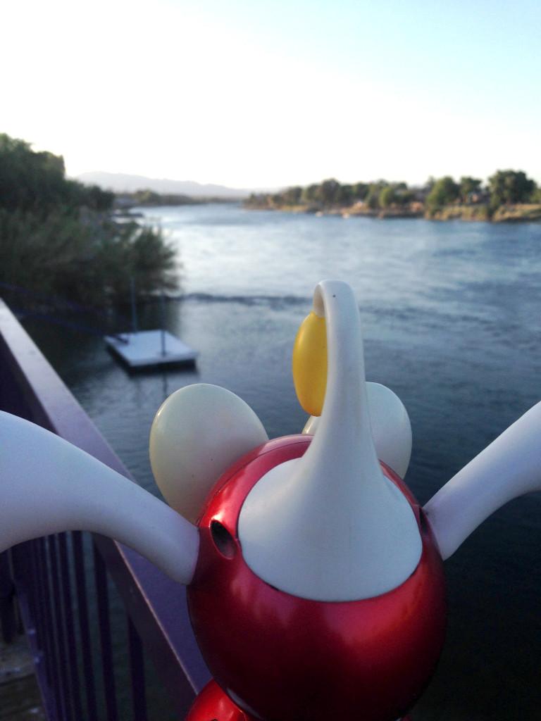 At the Colorado River Thursday.